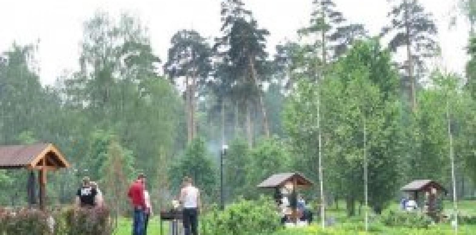 Штраф за шашлыки во время карантина  в Киеве составит от 17 до 34 тыс. грн